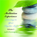 The Meditation Experience: Listening to Your Psychic Soul, Vol. 2