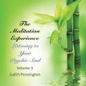 The Meditation Experience Vol. 3 CD