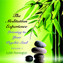 The Meditation Experience: Listening to Your Psychic Soul, Vol 1